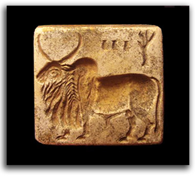 Image of Indus Valley seal.
